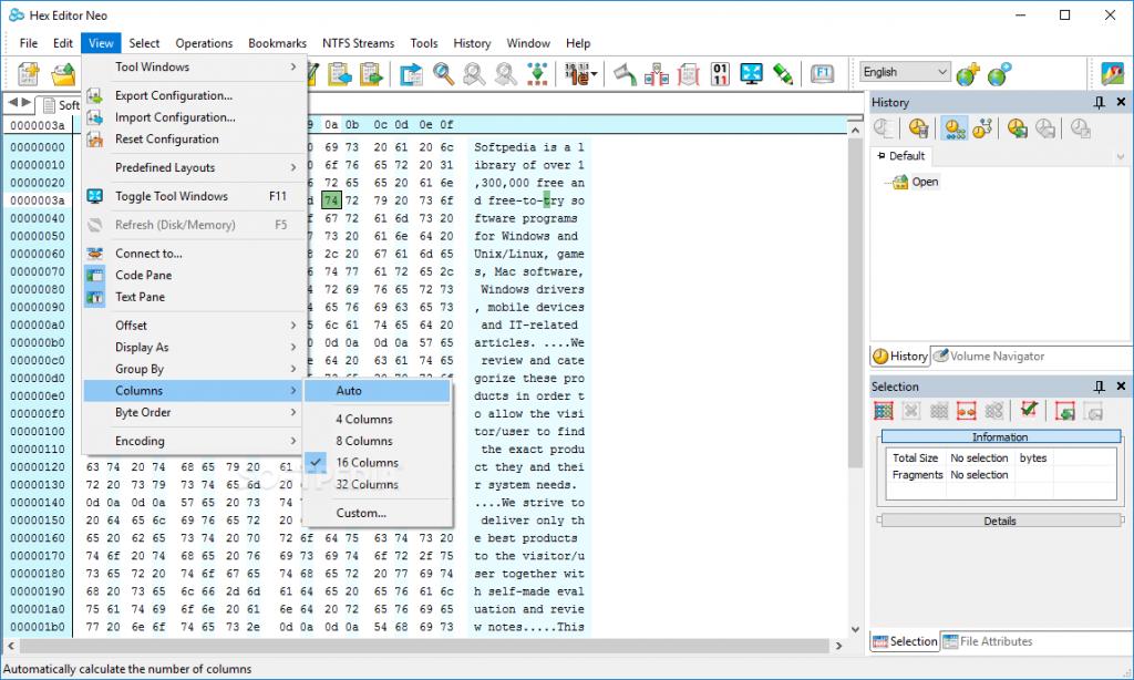 Hex Editor Neo Crack 6.54.01.6478 + License Key 2021 [Latest]