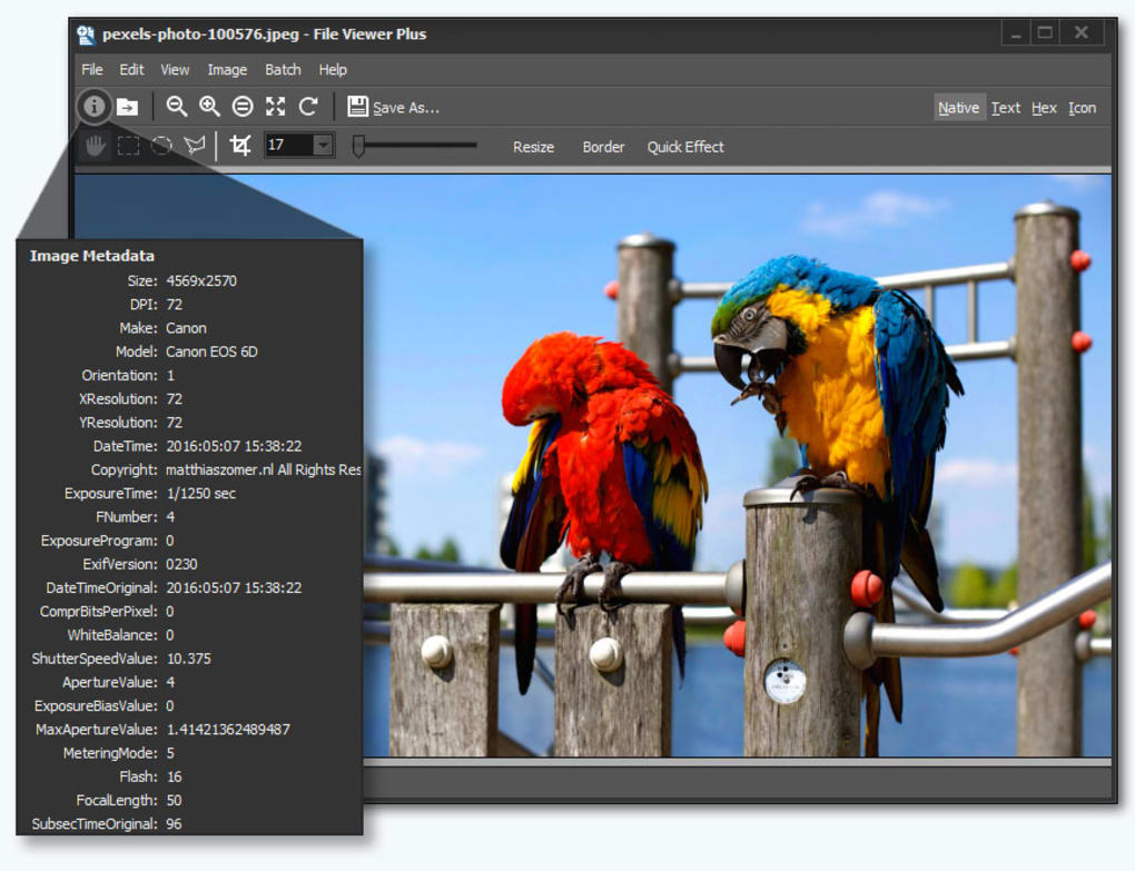 File Viewer Plus Crack 4.0.1.8 + Activation Key 2021 [Latest]