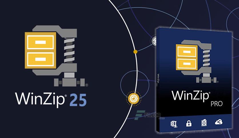WinZip Pro Crack 25 Plus Activation Code Full Keygen 2021