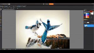 Corel PaintShop Pro Crack 2021 23.1.0.27 & Product Key [Latest] 2021